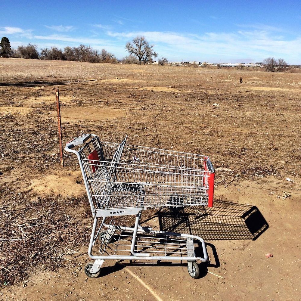 bbme-shopping-cart5.jpg