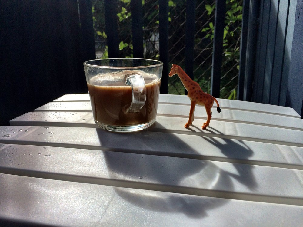 pumpkin-the-giraffe-with-coffee.JPG