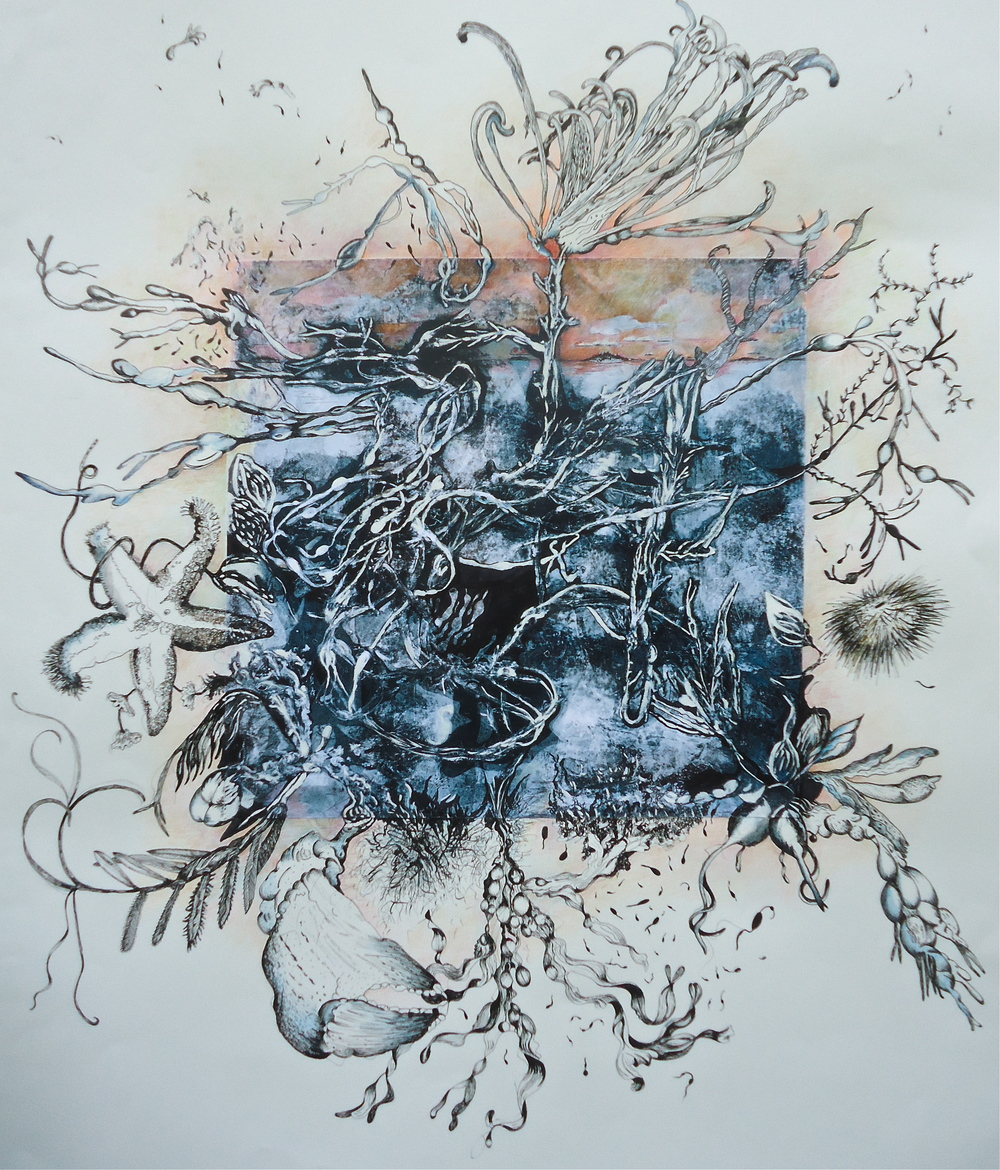 Tidal Landscape   35 x 40 inches  monotype, drawing, painting  2014