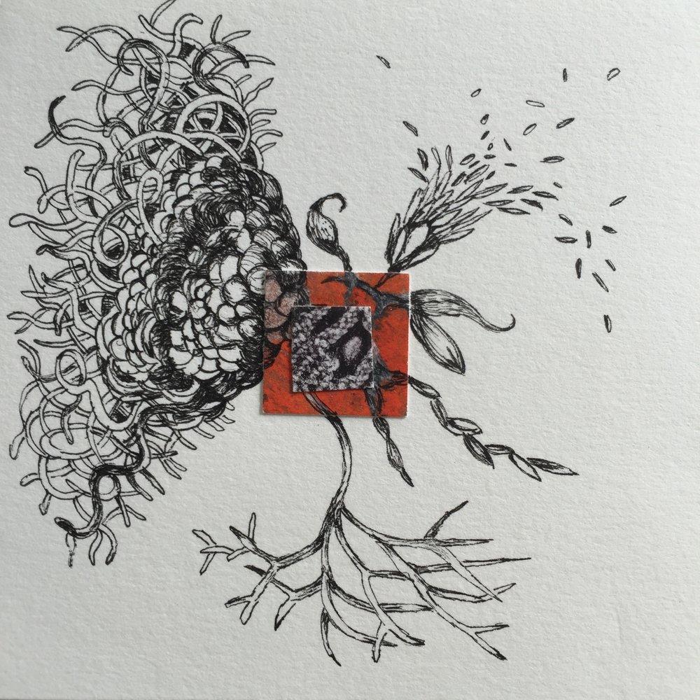 Shigaraki Japan 5   4 1/2 x 4 1/2 inches  ink on paper  2015
