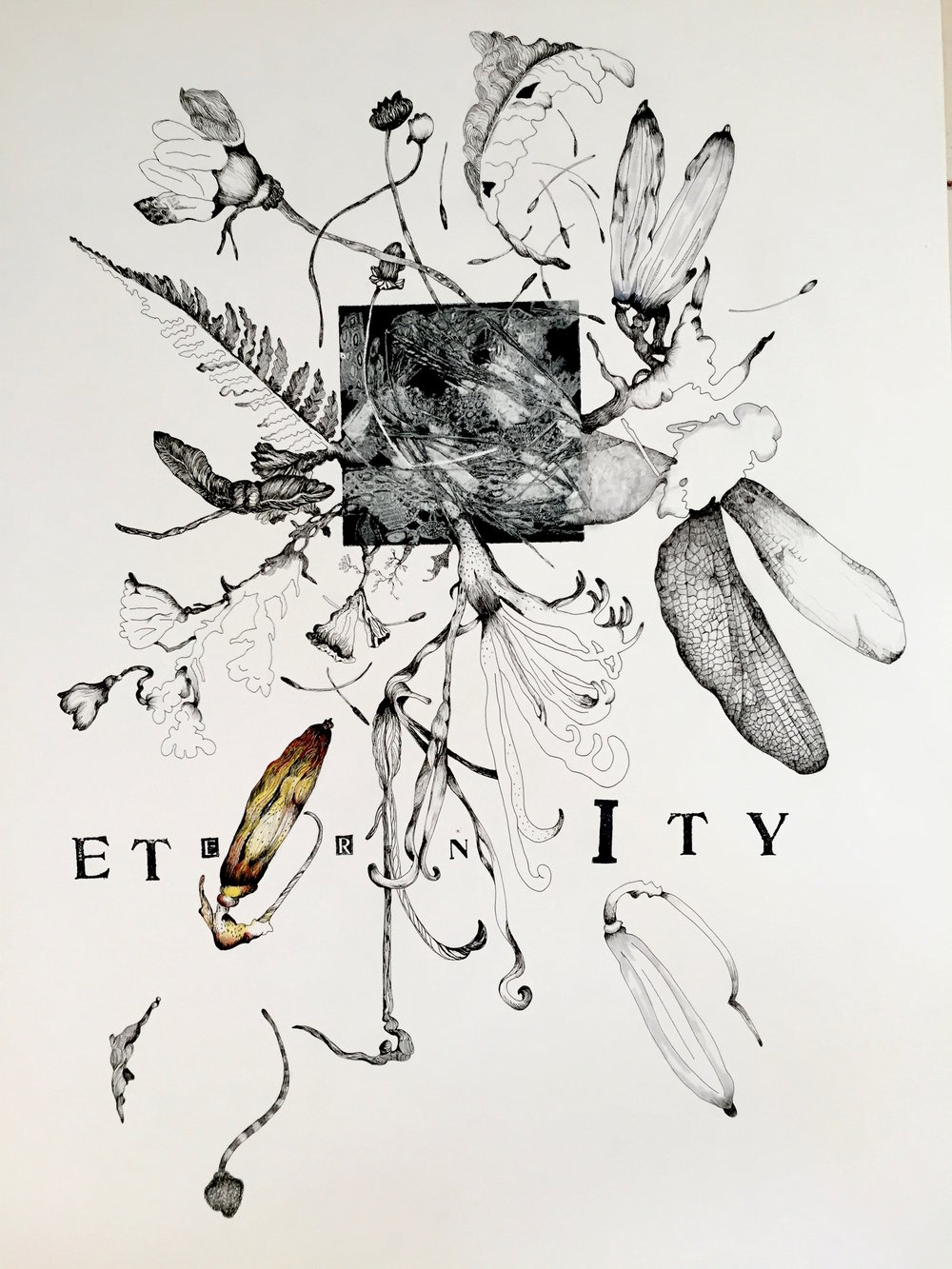 Eternity   23 x 30 inches  mixed media  image: Susan Webster  hand stamped text: Stuart Kestenbaum  2015