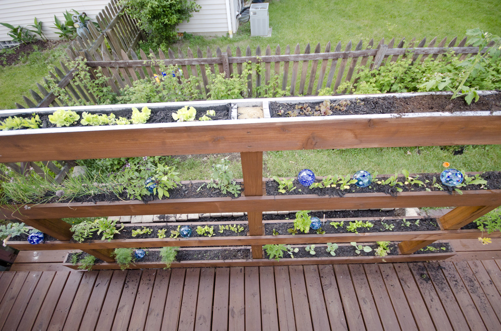 How does your garden grow? UP!
