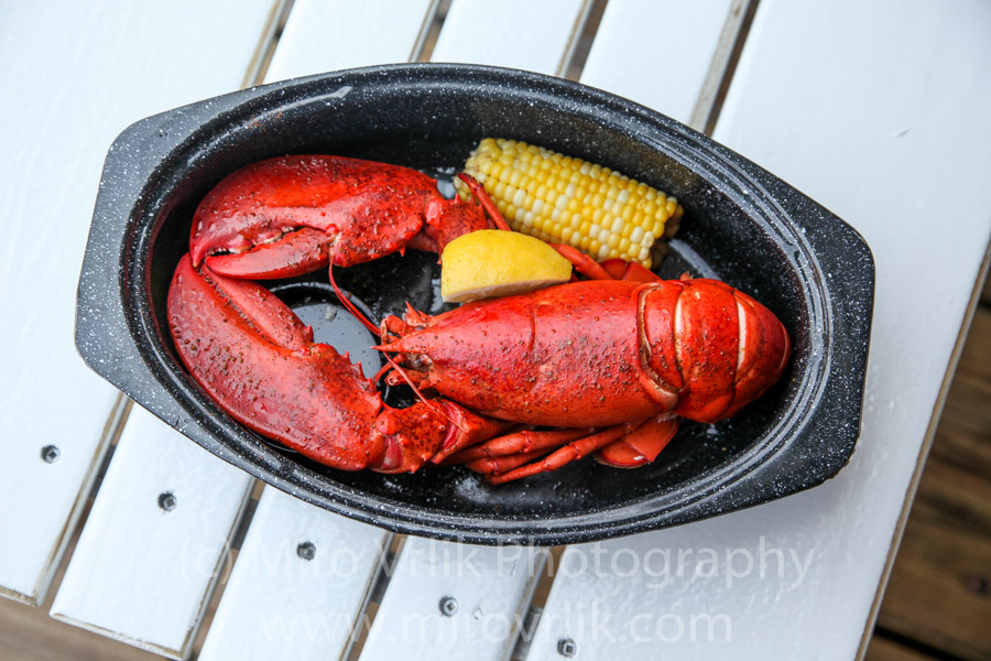 Traditional Maine lobster plate