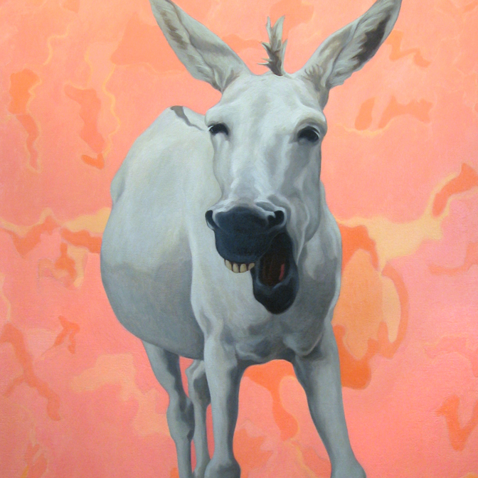 Donkeyseries