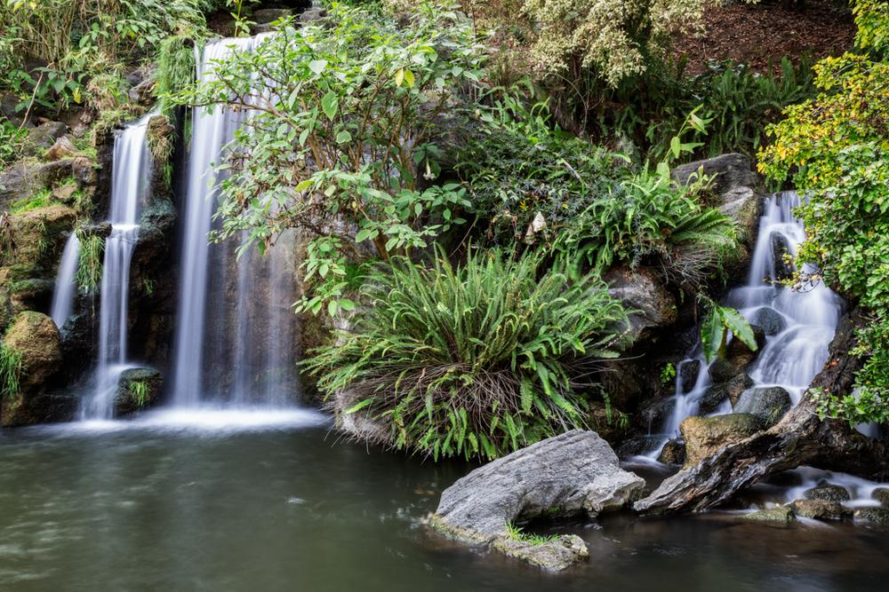 Meyberg Waterfall, LA Arboretum