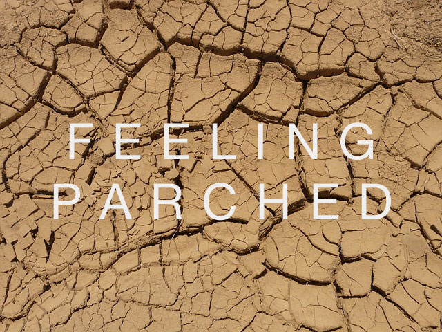 feeling-parched-cracked-earth.jpg