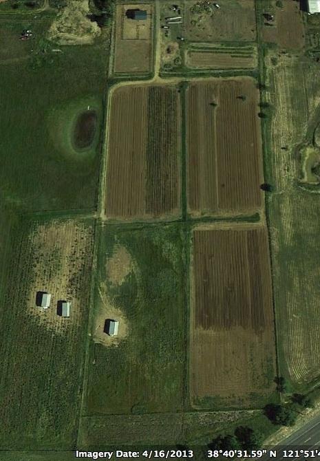 say hay aerial.jpg