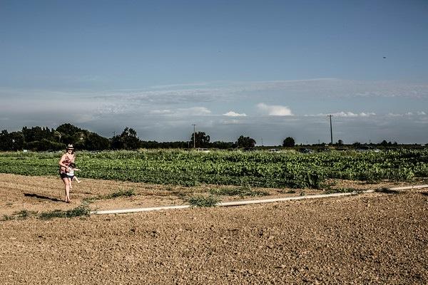 Farmscape