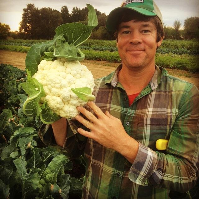 Farmer Dusty and his Cauliflower.