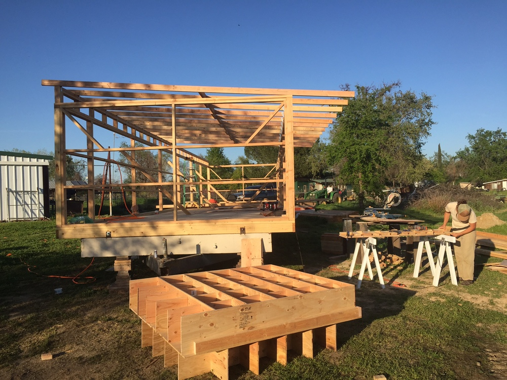 Framing the structure. And the genius, simple laybox design by none other than May Reid-Marr.