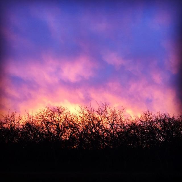 A fiery sunset last night.