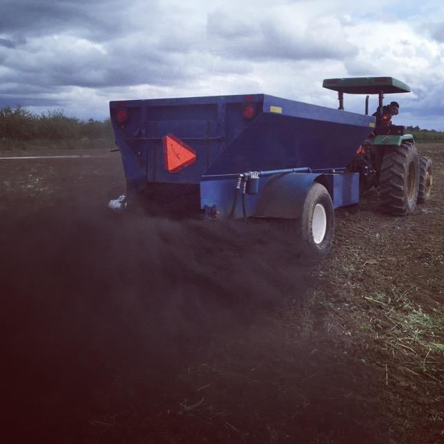 Spreading compost.