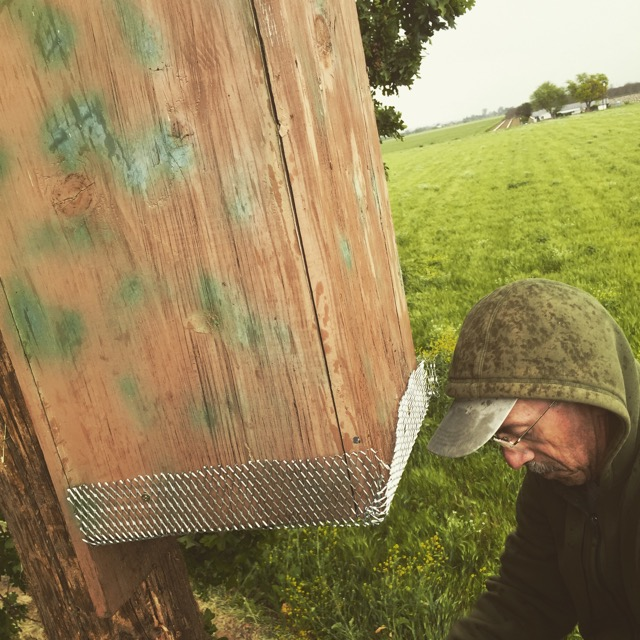 Jon moving our bat box from the old barn to the edge of the field.