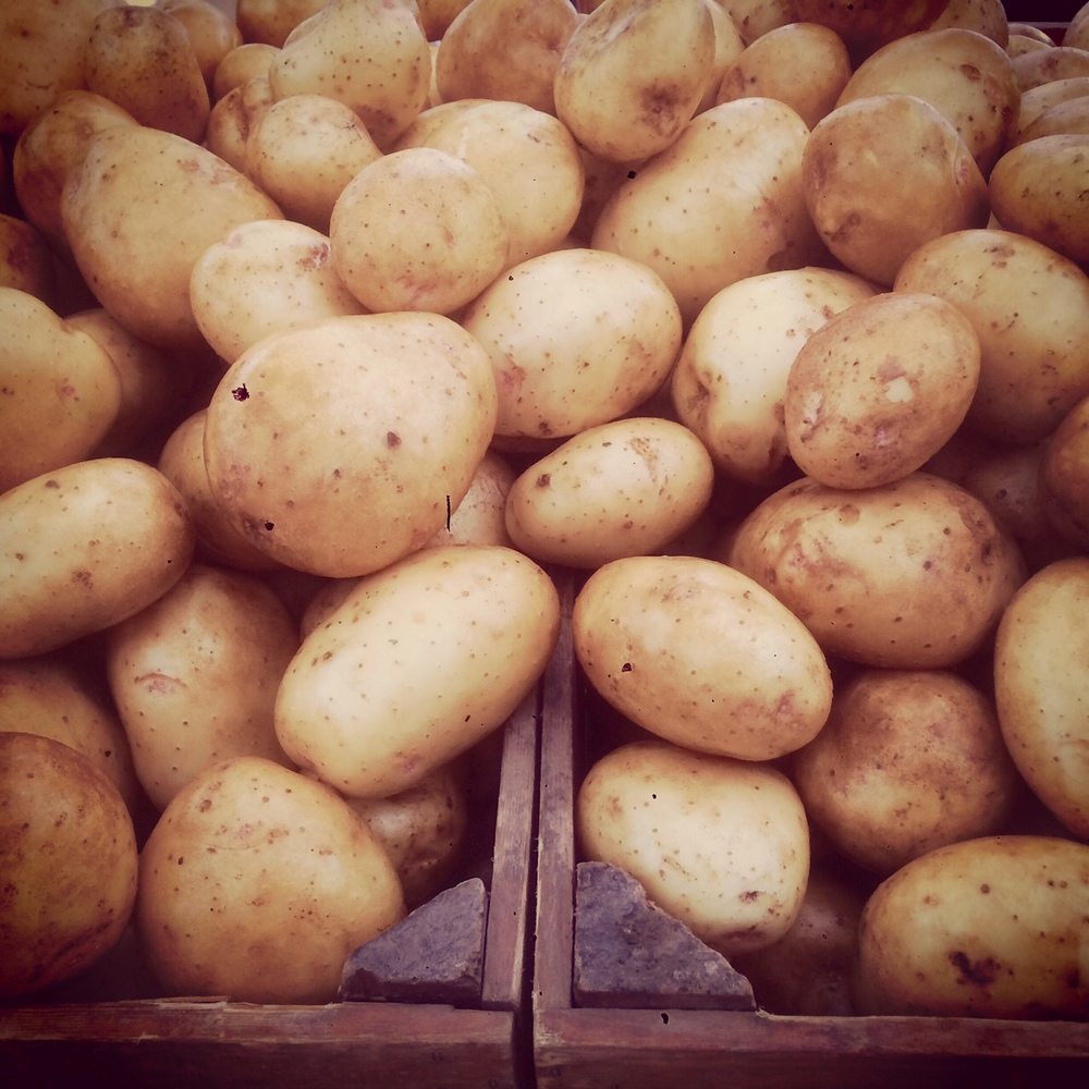 Our Yukon Gold New Potatoes.