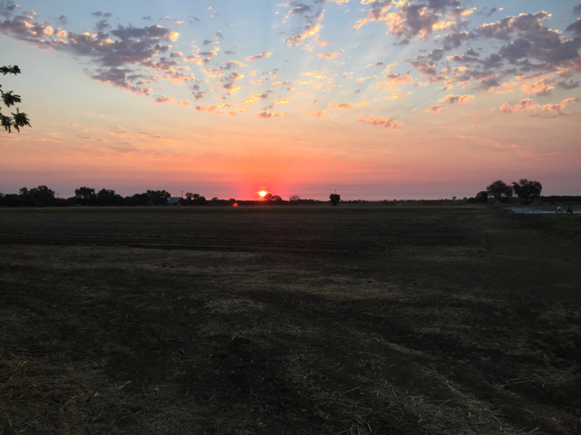 Valley sunrise in the field.