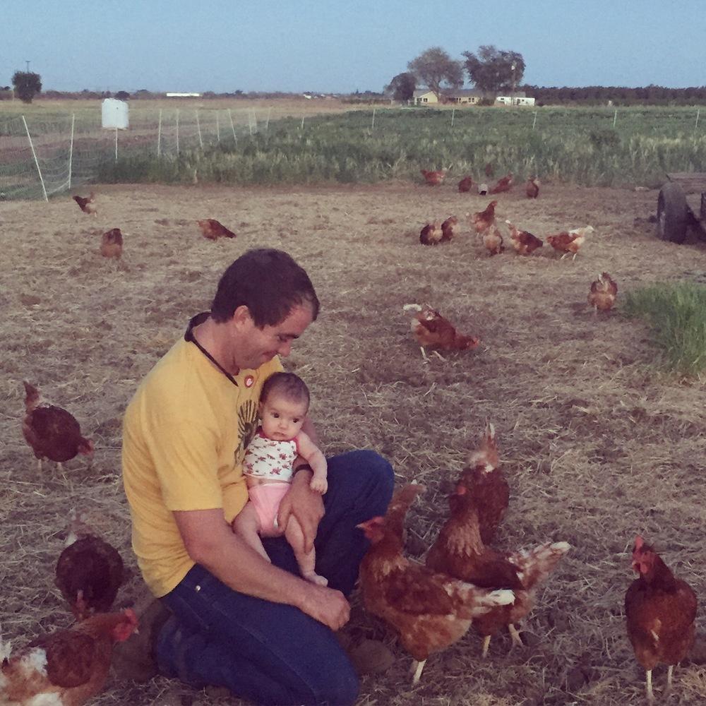 This little farmer met her first chicken that evening.