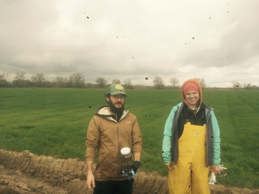 Sean & Maggie: Keeping it real in the cold, wet, and windy for CSA harvest.
