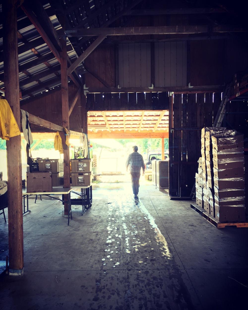Farmer Dusty in his zone.