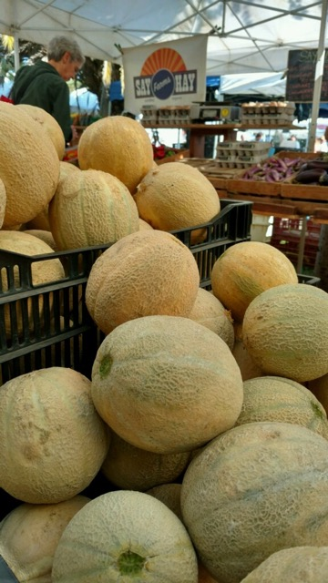 The last of the season's melons re-appear in next week's box.