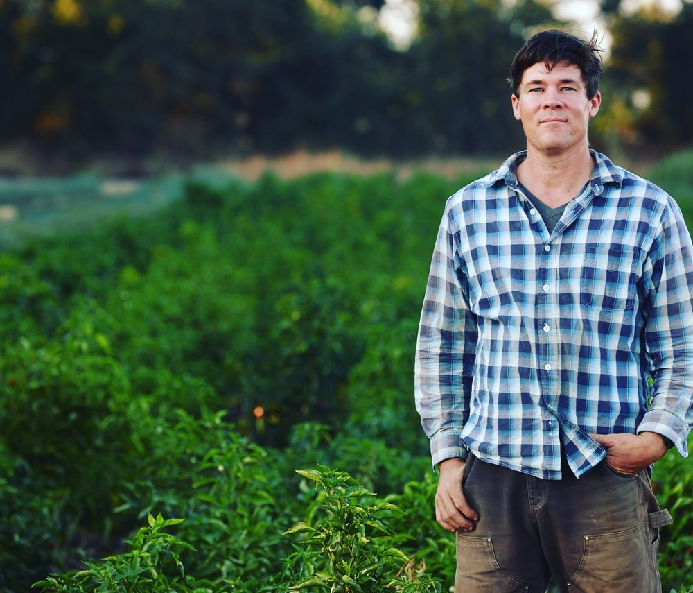 Dusty, Harvest Manager.  Completing his fourth season at Say Hay, his skills forecasting yield, directing harvest, and controlling quality (plus a whole lot of hard work!) show in the vegetables we raise for our CSA members and other customers.