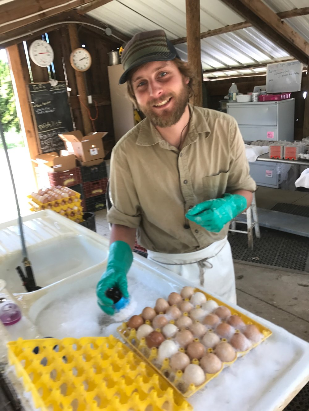 Meet Scott. He is in charge of the day-to-day chicken welfare and egg handling on the farm. You can also thank him for converting those muddy winter eggs into the clean, beautiful ones in your boxes over the past few months.  (Mostly) sunshine ahead!