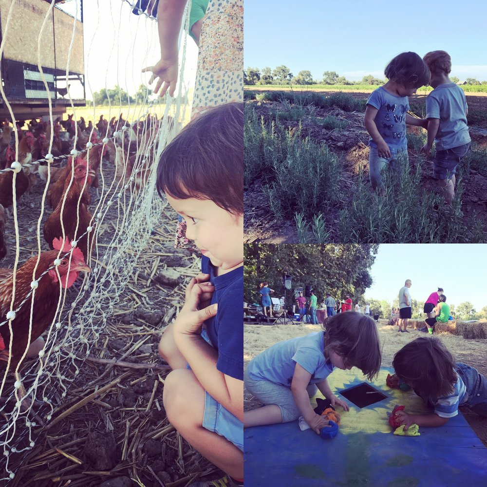 Little ones exploring the farm at Say Hay Day 2017