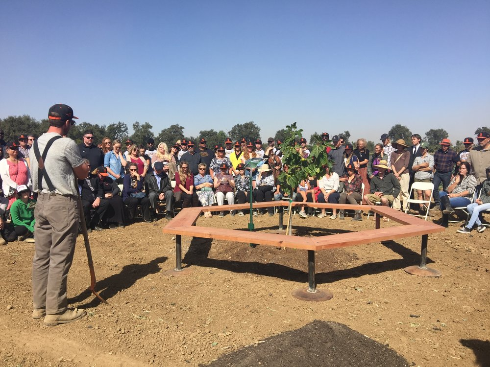 The Dusty Farmer Memorial Site dedication took place in the geographical heart of our farm, where we planted a fig tree as a living tribute to Dusty's life's work and passion.