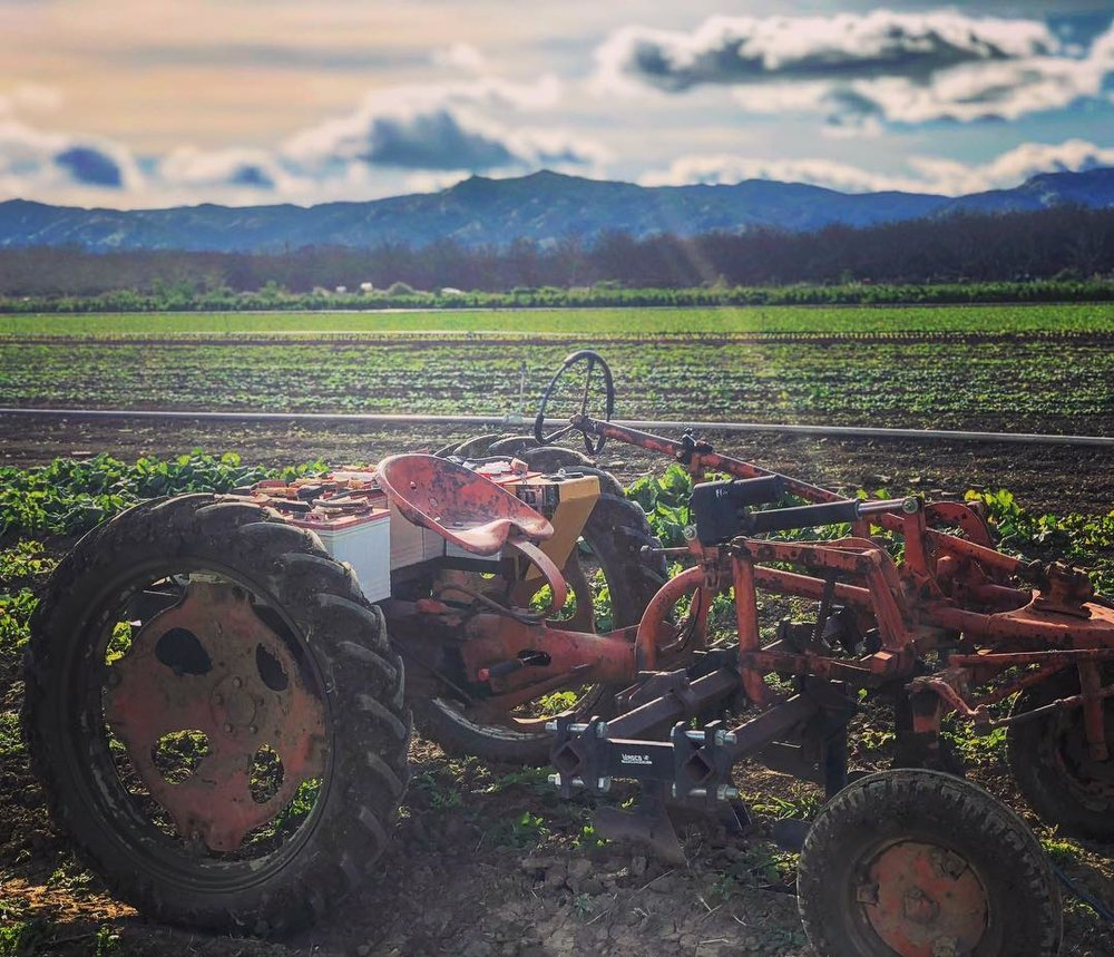 Cultivating spinach, beets, carrots, and arugula in the cold wind!  #electrictractor