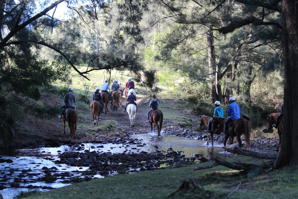 Horseriding on retreat