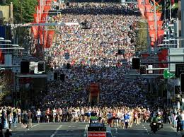 city 2 surf net.jpg
