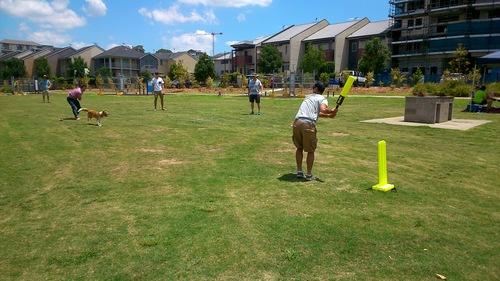 xmas 2014 cricket.jpg