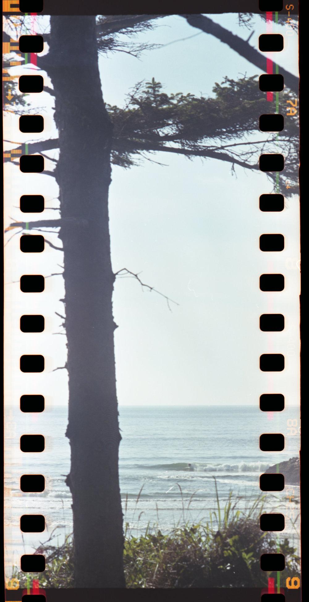nw coast003.jpg