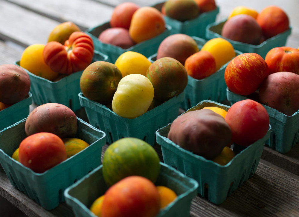 Zone-7-Tomatoes-3.jpg