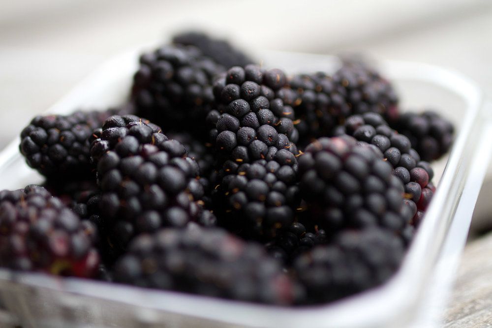 Zone7_Blackberries3.jpg