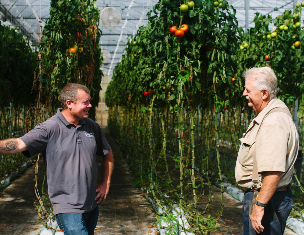 Whitestar Growers, Doylestown, PA