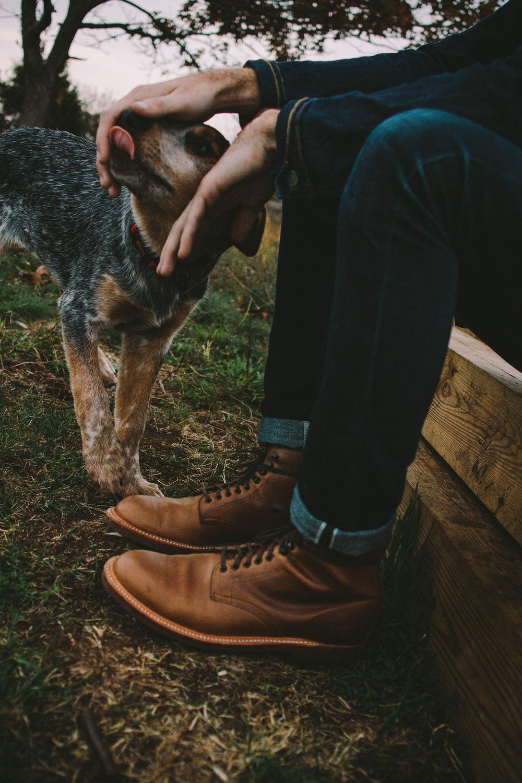 Чистить туфли начальницы 4 фотография