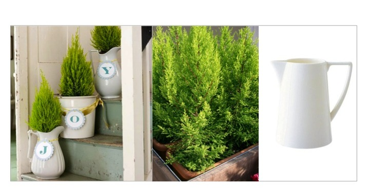 Mini_Cypress