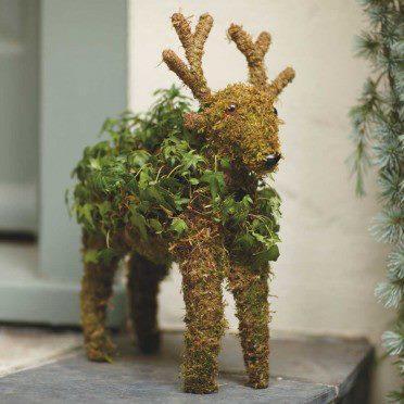 17_Reindeer