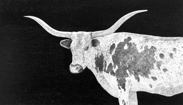 Long Horn, by Carol Rowan