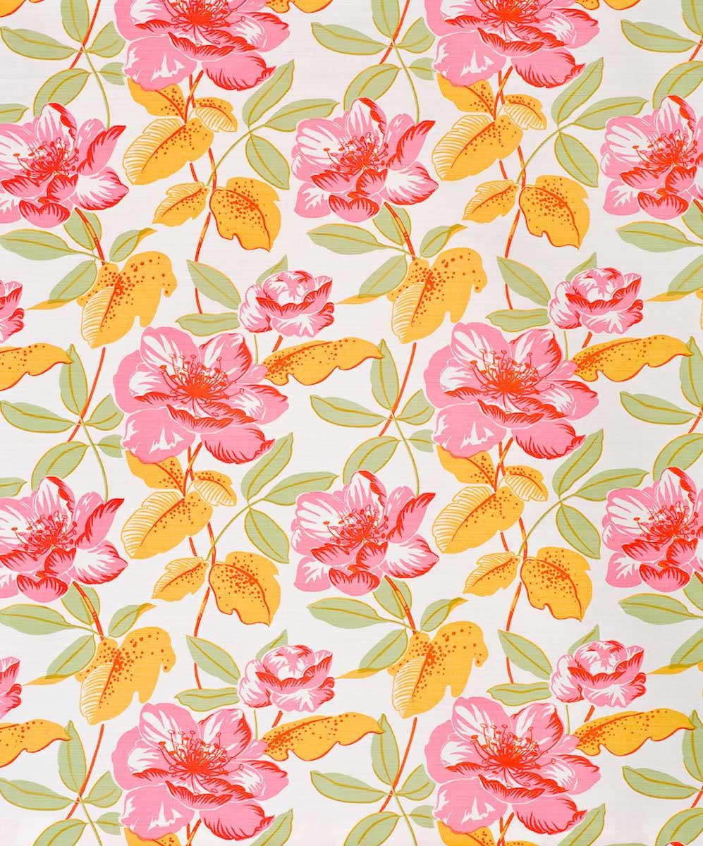 Magnoliaorangepink.jpg