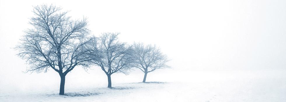winterruhe_koprax.jpg