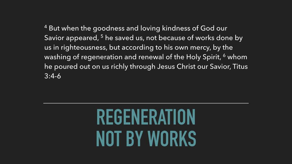 Regeneration.006.jpeg