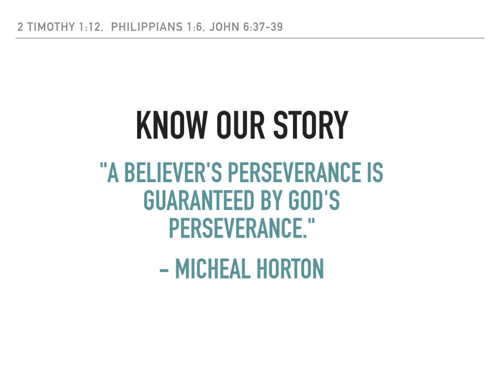 Perseverance.003.jpeg
