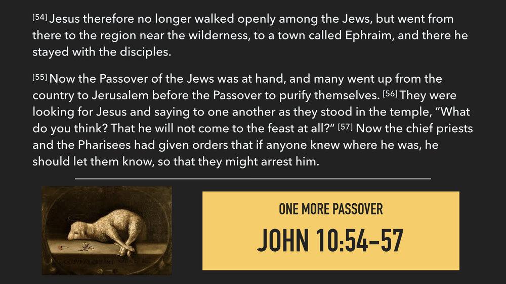 John 11:45-57.007.jpeg