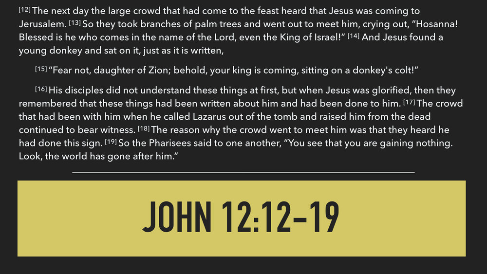 John 12:12-19.003.jpeg