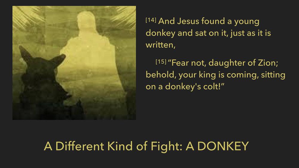 John 12:12-19.006.jpeg