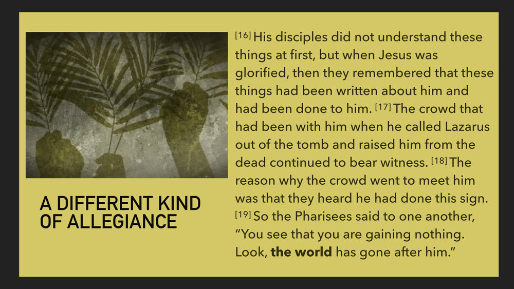 John 12:12-19.007.jpeg