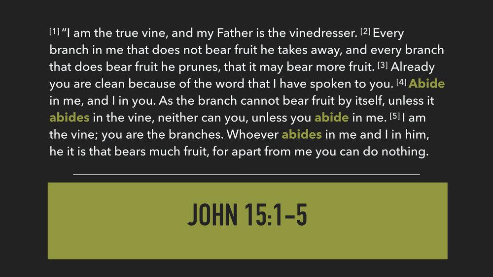 John 15:1-5.002.jpeg