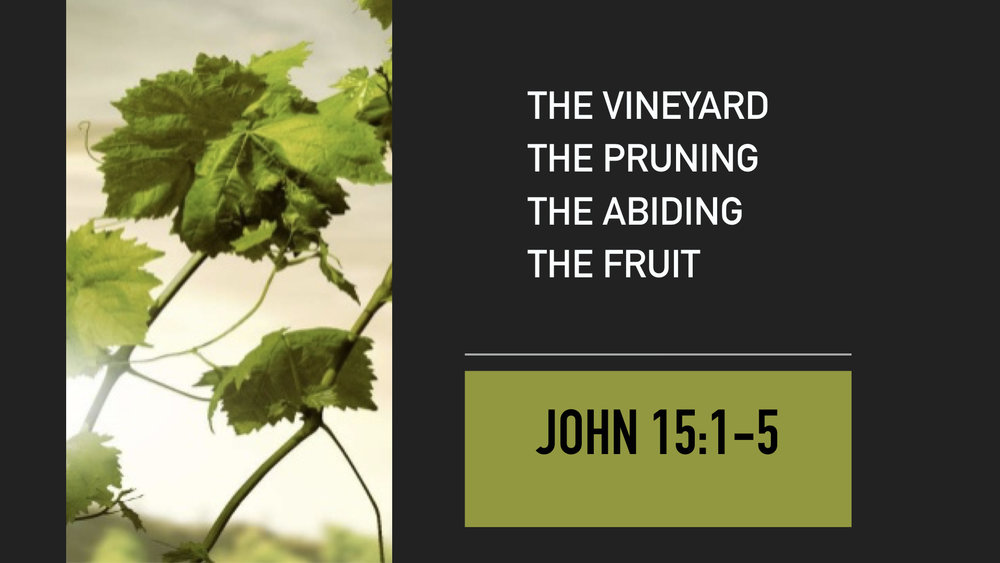 John 15:1-5.003.jpeg