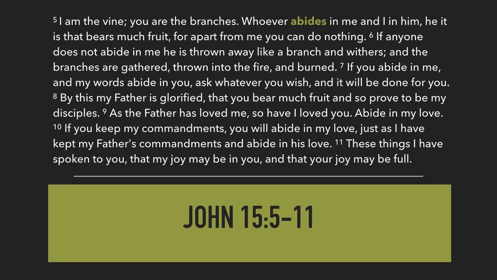 John 15:6-11.002.jpeg